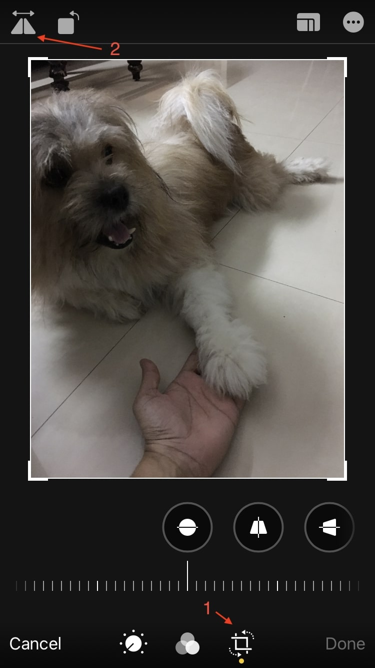 flip photo iPhone