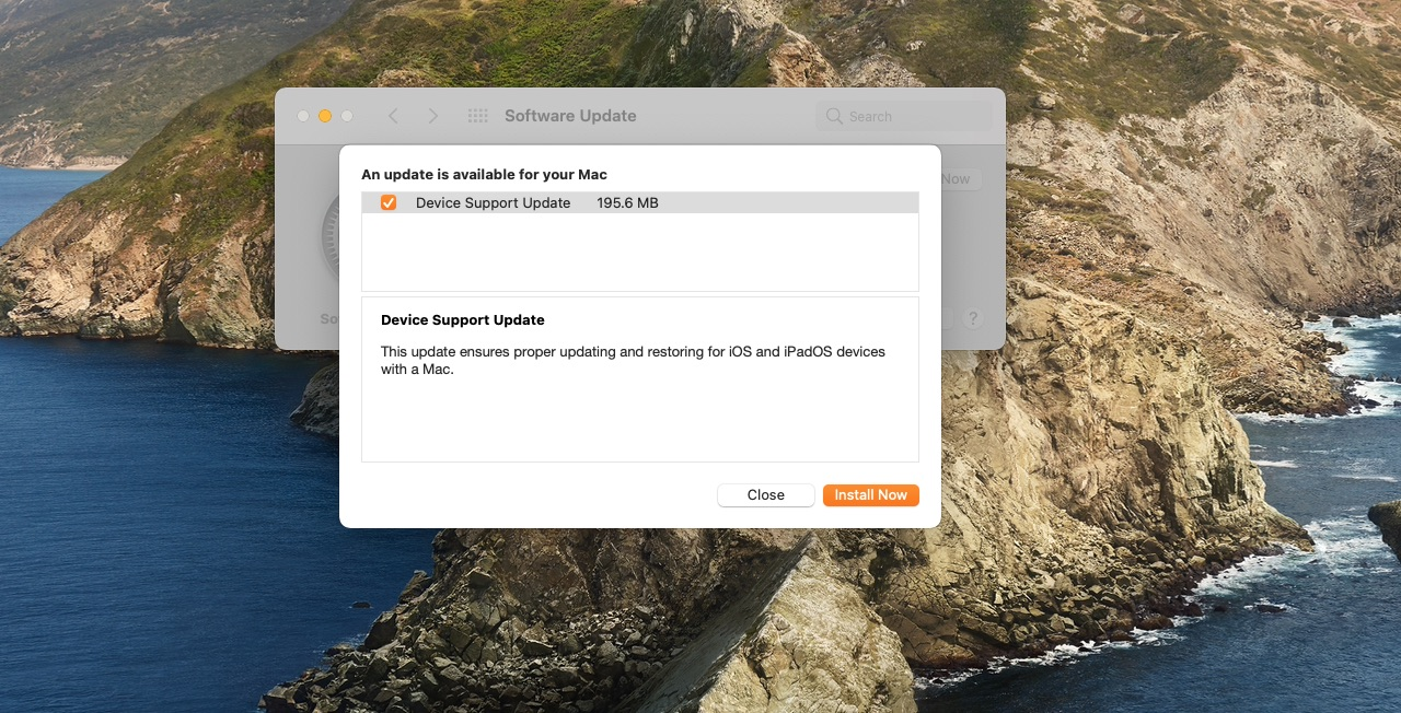 A screenshot showing the Software Update feature on macOS Big Sur displaying details about Apple's Device Support Update